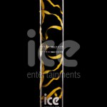 Ice Cannons Product Packaging Gold Confetti Cannon Upright