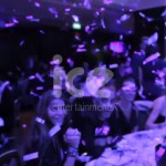 Ice Cannons Weddings Party Celebrations Wedding Ceremony Celebrations